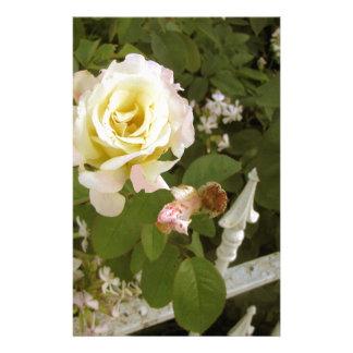 Peace Rose Stationery Design