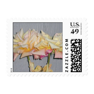 Peace Roses Postage