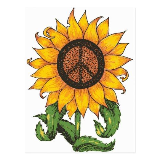 Peace Sun Flower Postcard