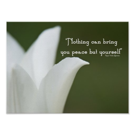 Peace Tulip Poster