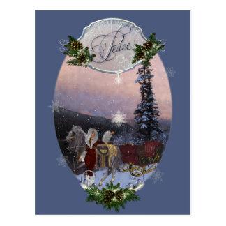 Peace Winter Solstice Postcard