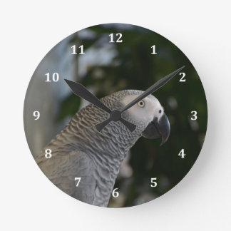 Peaceful African Grey Round Clocks