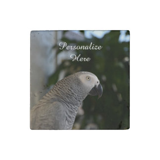 Peaceful African Grey Stone Magnet