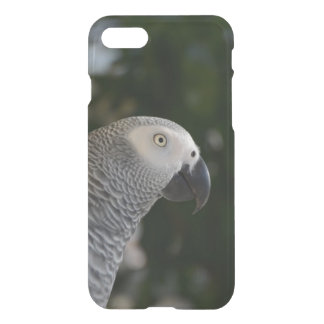 Peaceful African Grey iPhone 8/7 Case