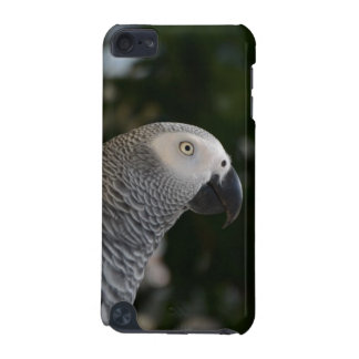 Peaceful African Grey iPod Touch 5G Cover