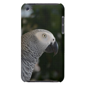 Peaceful African Grey iPod Touch Case