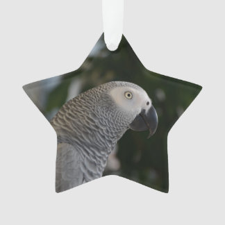 Peaceful African Grey Ornament