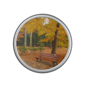 Peaceful and Quiet Autumn in the Park Bluetooth Speaker