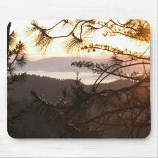Peaceful and Serene Dawn in the Redwood Forest Mouse Pad