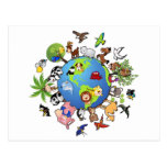 Peaceful Animal Kingdom - Animals Around the World Post Cards