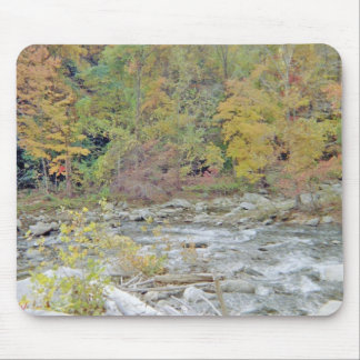 Peaceful Area In The Middle of the Woods Mouse Pad