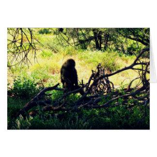 Peaceful Baboon Card