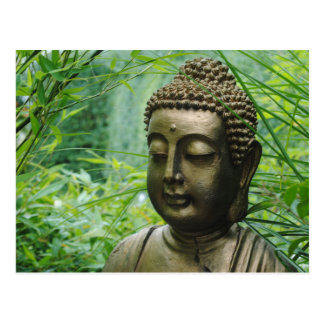 Peaceful Buddha Statue in a Leafy Green Forest Postcard