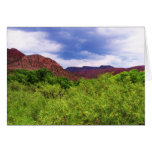 Peaceful Canyon - Southwest Outdoors - Blank Card