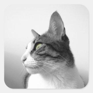 Peaceful Cat Square Sticker