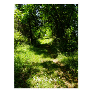 Peaceful Country Pathway Postcard