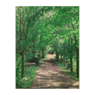 Peaceful Day in Connecticut Wood Print
