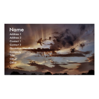 Peaceful Double-Sided Standard Business Cards (Pack Of 100)