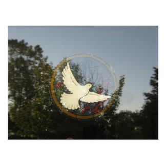Peaceful Dove Postcard