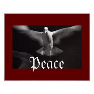 Peaceful Dove Poster