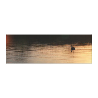 Peaceful Duck Canvas Gallery Wrapped Canvas