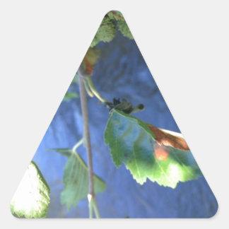peaceful gift triangle sticker
