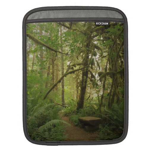 Peaceful Green Forest Trail in Washington iPad Sleeve