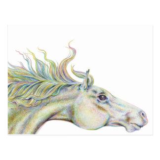Peaceful Horse Postcard