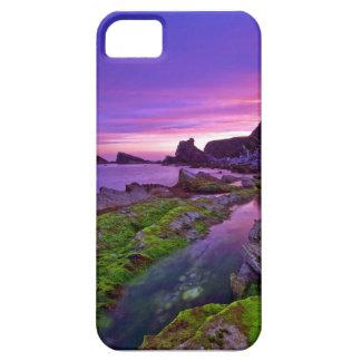 Peaceful Mountain lake iPhone 5/5S Case