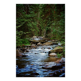 Peaceful Mountain Stream print