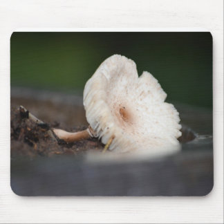 Peaceful Mushroom ! Mouse Pad