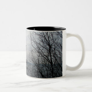 Peaceful Overlook Mugs