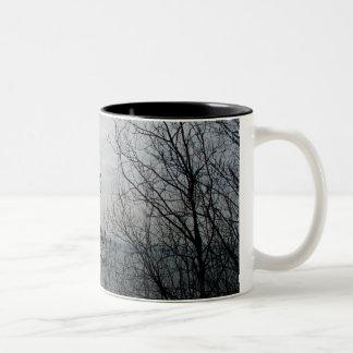 Peaceful Overlook Two-Tone Coffee Mug