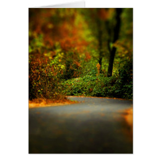 Peaceful Pathway Cards
