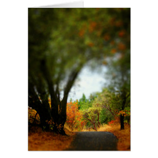 Peaceful Pathway Greeting Card