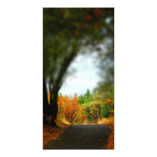 Peaceful Pathway Photo Card