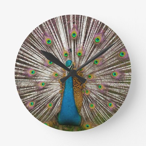 Peaceful Peacock Round Wallclocks