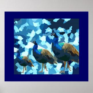 Peaceful Peacocks Poster