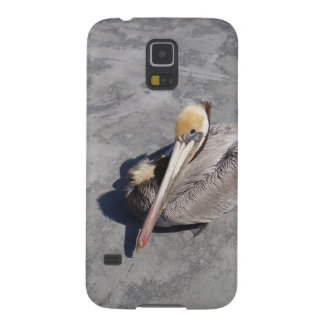 Peaceful Pelican Galaxy S5 Cover