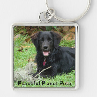 Peaceful Planet Pets Ministry Keychain