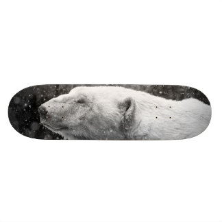Peaceful Polar Bear Skateboard