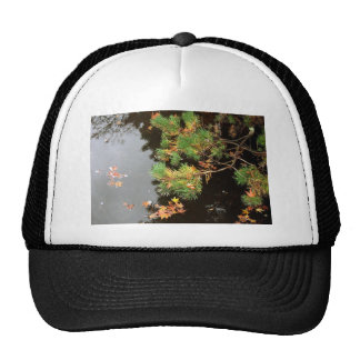 Peaceful Reflections - Yashiro Japanese Gardens Trucker Hat
