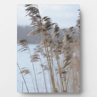 Peaceful Scenic Winter Lake Grass Photo Plaque