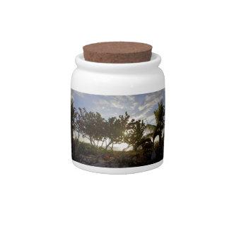 Peaceful Seascape Candy Jar