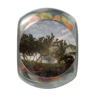 Peaceful Seascape Jelly Belly Candy Jars