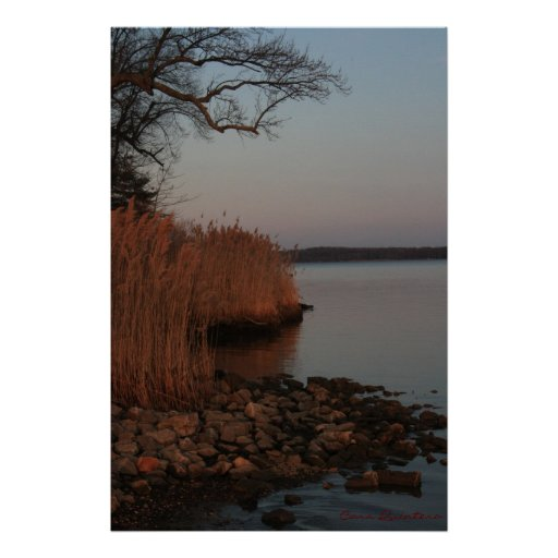 Peaceful Shore Print