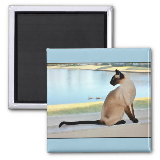 Peaceful Siamese Cat Painting 2 Inch Square Magnet