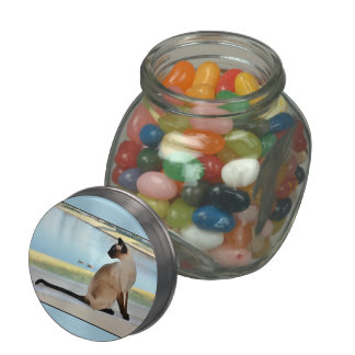 Peaceful Siamese Cat Painting Glass Candy Jars