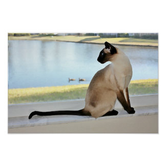 Peaceful Siamese Cat Painting Posters