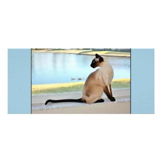 Peaceful Siamese Cat Painting Rack Card